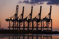 Coucher du soleil ou lever de soleil derrière des grues au port de récipient Photographie stock libre de droits