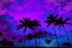 Coucher du soleil ou lever de soleil tropical de silhouette de palmiers Image stock