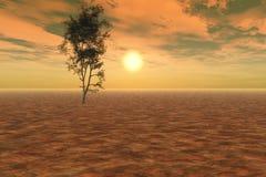 Coucher du soleil paisible Image libre de droits