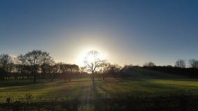 Coucher du soleil par des arbres Image libre de droits