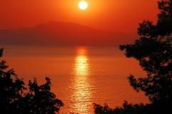 Coucher du soleil par des arbres de pin Image stock