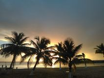Coucher du soleil par les arbres de noix de coco photos stock