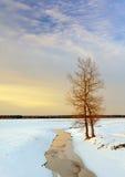 Coucher du soleil pendant l'hiver Photos stock