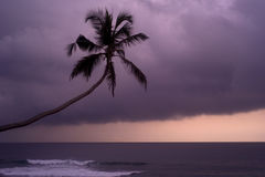Coucher du soleil pluvieux Image stock