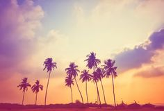 Coucher du soleil pourpré Photo libre de droits