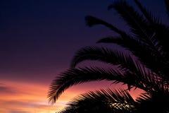 Coucher du soleil pourpre dans le paradis Image libre de droits