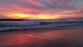 Coucher du soleil pourpre rouge-rose jaune au-dessus de l'eau 4k banque de vidéos