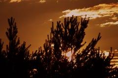 Coucher du soleil près de petite ville Okrisky Photographie stock