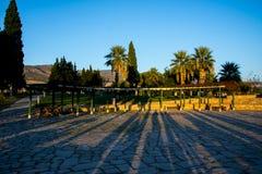 Coucher du soleil réfléchissant sur les arbres en vallée de Pamukkale Photos libres de droits
