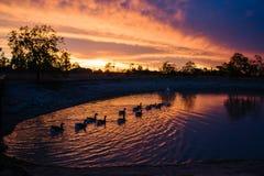 Coucher du soleil rocheux de lac Images libres de droits