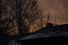 Coucher du soleil romantique avec une partie du toit d'une maison Image libre de droits