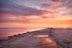 coucher du soleil rose