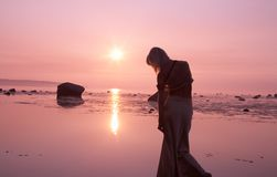 Coucher du soleil rose images stock