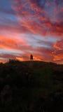 Coucher du soleil rose Photographie stock