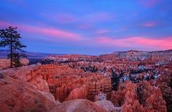 Coucher du soleil rose chez Bryce Canyon National Park Photographie stock libre de droits