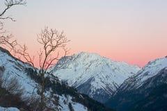 Coucher du soleil rose dans les montagnes Photographie stock