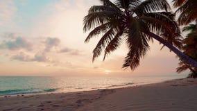 Coucher du soleil rose naturel Les meilleurs couchers du soleil au monde Nuages de rose de nature et ciel bleu reflétés dans l'ea banque de vidéos