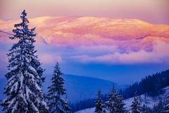 Coucher du soleil rose vibrant d'hiver haut dans les montagnes photo stock