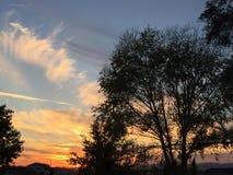 Coucher du soleil rural de ranch de pays de vin avec des arbres et des nuages Image libre de droits