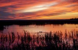 Coucher du soleil Saskatchewan rurale Photos libres de droits