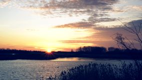 Coucher du soleil scénique au lac, vidéo 4K banque de vidéos
