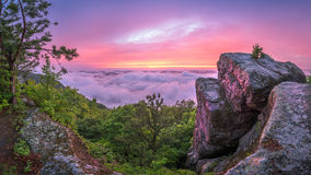 Coucher du soleil scénique, traînée de montagne de pin, Kentucky Images libres de droits