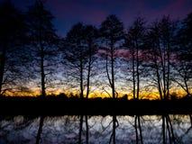 Coucher du soleil silhouetté d'arbres images stock