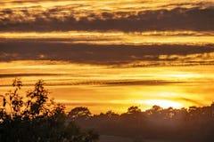 Coucher du soleil silhouetté en bois antérieur, Crowhurst, le Sussex est, Angleterre photographie stock