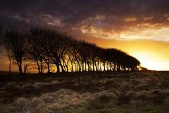Coucher du soleil Silouette Photos libres de droits
