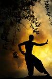 Coucher du soleil spirituel d'arts martiaux images libres de droits