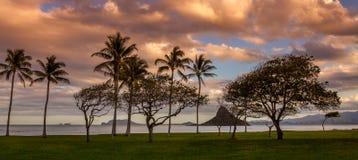 Coucher du soleil sur la côte au vent Photo libre de droits
