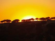 Coucher du soleil sur la campagne images libres de droits