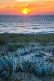 Coucher du soleil sur la dune dans l'ouest du sud Photographie stock libre de droits