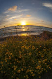 Coucher du soleil sur la mer Méditerranée image libre de droits