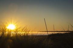 Coucher du soleil sur la péninsule de Darss, Allemagne Images libres de droits