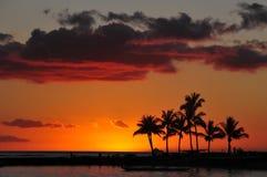 Coucher du soleil sur la plage de Waikiki Images libres de droits