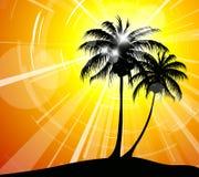 Coucher du soleil sur la plage - image de vacances illustration stock