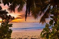Coucher du soleil sur la plage tropicale - Seychelles Photographie stock libre de droits