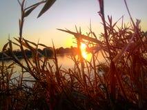 Coucher du soleil sur la rivière Images stock