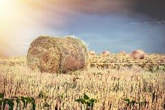 Coucher du soleil sur le champ avec des balles de paille Images libres de droits