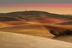 Coucher du soleil sur le désert de thar en Inde Photos stock