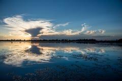 Coucher du soleil sur le delta d'Okavango photos libres de droits