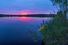 Coucher du soleil sur le lac avec des fleurs sur le rivage Photos stock