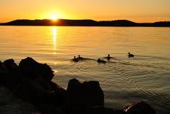 Coucher du soleil sur le Lac Balaton Photos stock