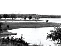 Coucher du soleil sur le lac en noir et blanc photo stock