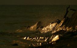 Coucher du soleil sur le littoral Photographie stock