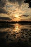 Coucher du soleil sur le marais Photos stock