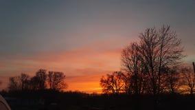 Coucher du soleil sur les arbres images libres de droits
