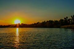 Coucher du soleil sur les grands roseaux de rivière couverts de Photo stock