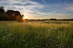 Coucher du soleil sur un champ en Finlande Images libres de droits